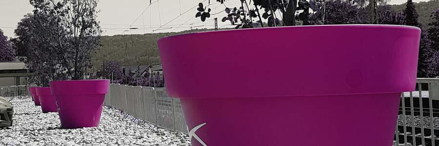 xxl-ueber-gross-pflanzgefaesse-blumenkuebel-pflanzkuebel-extra-gross-fuchsia-pink